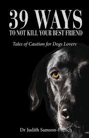 39 Ways To Not Kill Your Best Friend book cover