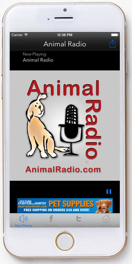 The free Animal Radio® App - Download it now!!