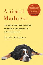 Animal Madness book cover
