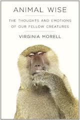 Animal Wise book cover