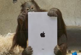 Ape with iPad