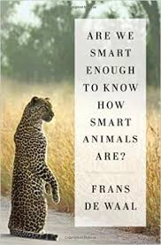 Are We Smart Enough Book Cover