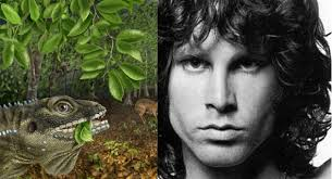 Barbaturex Morrisoni Lizard and Jim Morrison