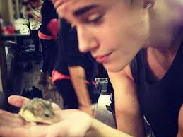 Justin Bieber holding his hamster