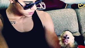 Justin Bieber with his Mally, his monkey
