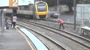 Bird on Train Track