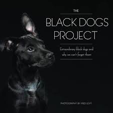 Black Dogs Project Book Cover