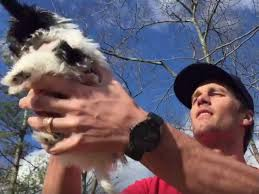 Tom Brady and dog Fluffy