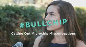 BullChip Logo
