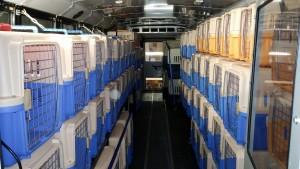 Inside a Rescue Express Bus
