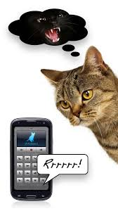 Cat Translator