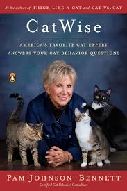 CatWise Book Cover