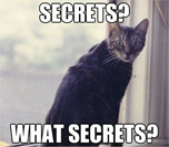Cat with secrets