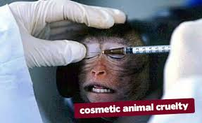 Cosmetic Testing on Monkey