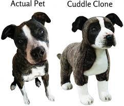 Cuddle Clone