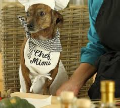 Dog in chef hat being served a meal