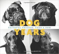 Dog Years Book Cover