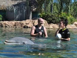 Alex Rigby, Debbie Preston and dolphin
