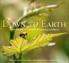Down To Earth book cover