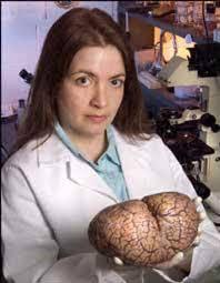 Dr. Lori Marino holding a brain