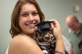 Eckerd Graduating Cat