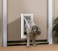 Endura Flap Pet Door