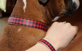 Friendship Dog Collar and Bracelet