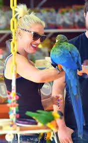 Gwen Stefani with Bird