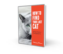 How To Find Lost Cat