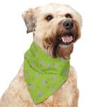 Dog Wearing Insect Shield Repellant Bandana