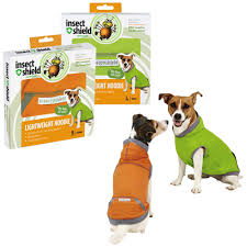 Dogs Wearing Insect Shield Clothing