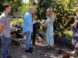 Jay and Charity Renew Vows at CatSanctuary