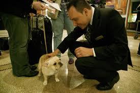Jerry Grymek and dog