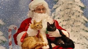 Jerry Carino as Pet Photo Santa