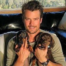 Josh Duhamel with dogs