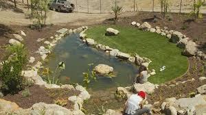 Koi Pond in Desert