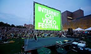 Feline Film Festival