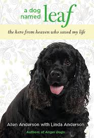 A Dog Named Leaf book cover