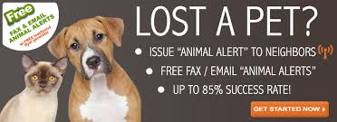 Lost My Doggie Dot Com Logo