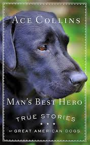 Mans Best Hero book cover