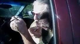 Monkey who bit cop