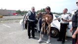 Officers with baby moose