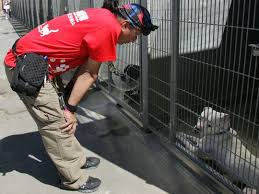 Nylander Guard Animal Rescue
