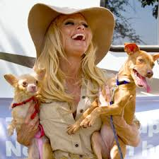 Pamela Anderson with Dogs