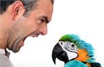 Man Arguing with Parrot