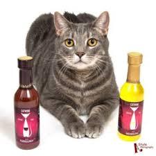 Cat With Pet Wines