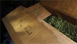 Marijuana pig feed