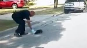 Police Rescue Stuck Skunk