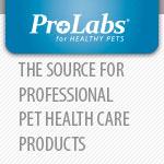 Pro Labs Logo