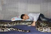 Azhe Liu with babysitting python